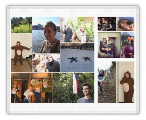 evs collage