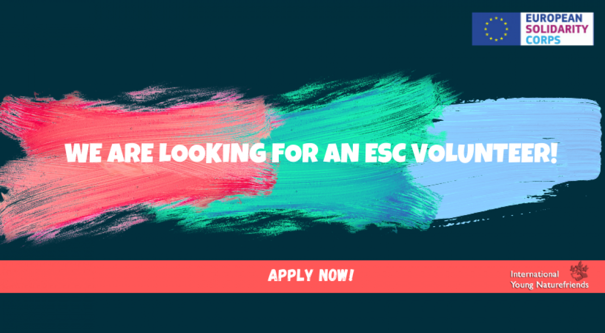 IYNF is looking for a European Solidarity Corps Volunteer!