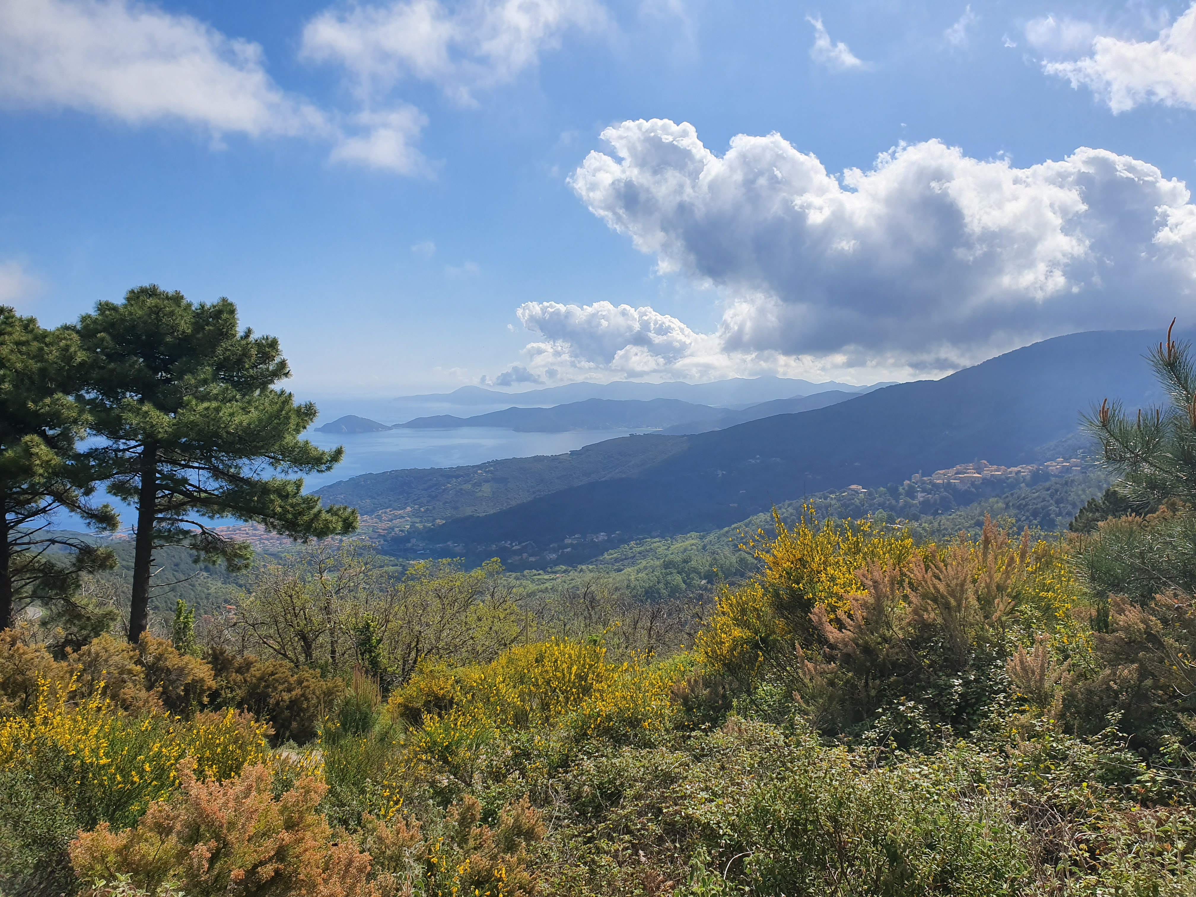 Elba Image by pozziss from Pixabay
